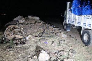 Petrol boru hattından hırsızlık olayında 14 kişi tutuklandı